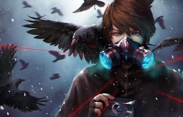 Картинка снег, птицы, маска, арт, фотоаппарат, лазер, вороны, парень, udonnodu