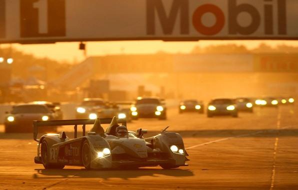 Фото обои R10, TDI, Le Mans, гонка, авто, Закат, Audi