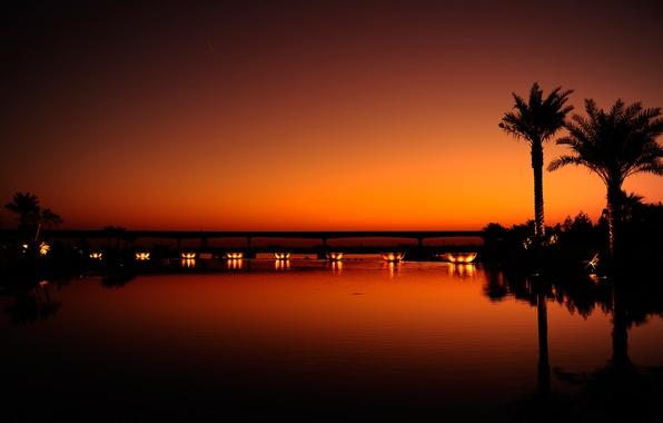 Картинка вода, свет, закат, ночь, оранжевый, город, отражение, пальмы, черный, вечер, дубаи