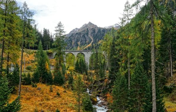 Картинка осень, лес, горы, мост, река, склон, арка