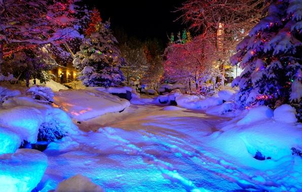 Картинка зима, снег, город, дом, парк, праздник, елка, ель, гирлянда, Christmas, Whistler Village