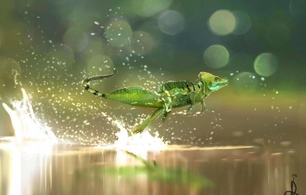 Картинка вода, цветы, брызги, природа, пальма, обои, скорость, красота, ящерица, арт, бег, полёт, искусство, art, рептилия, …