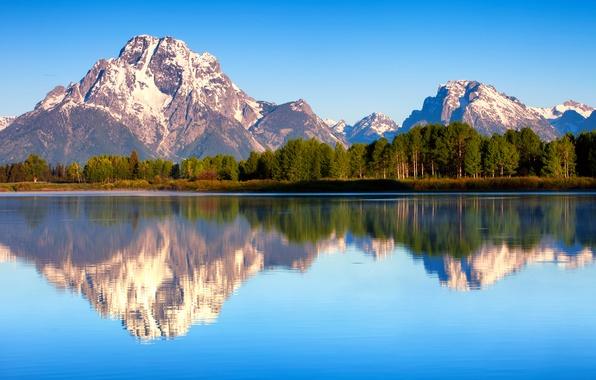 Картинка лес, лето, отражения, природа, утро, США, штата Вайоминг, Гранд-Титон национальный парк, Mount Moran, озеро Джексон