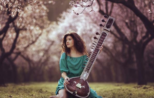 Картинка девушка, фон, инструмент, сидит