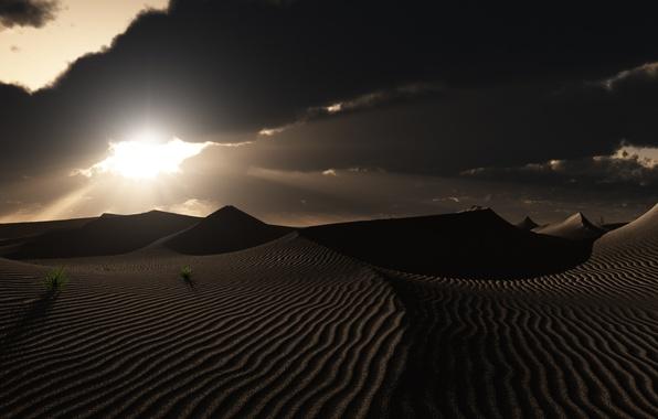 Картинка трава, облака, закат, следы, природа, пустыня, арт, дюны