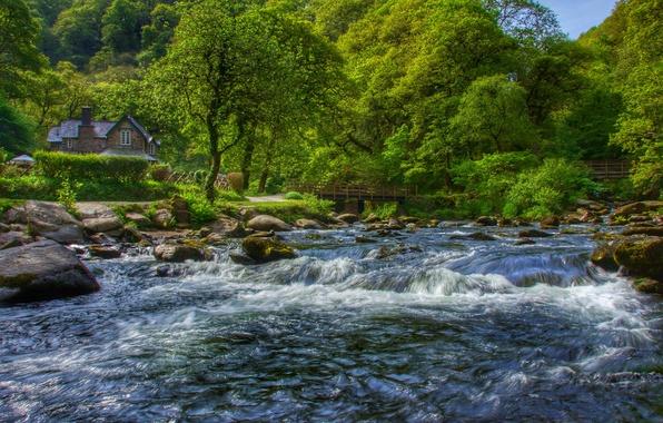 Картинка лес, деревья, дом, река, Англия, Devon, England, Девон, Exmoor, East Lyn River, Уотерсмит, Эксмур, Watersmeet