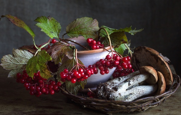 Фото обои ягоды, осень, грибы, подосиновик, калина