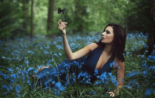 Картинка лес, девушка, цветы, бабочка