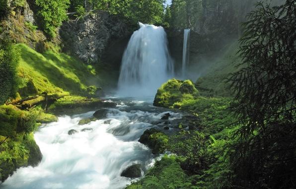 Картинка лес, лето, вода, природа, камни, водопад