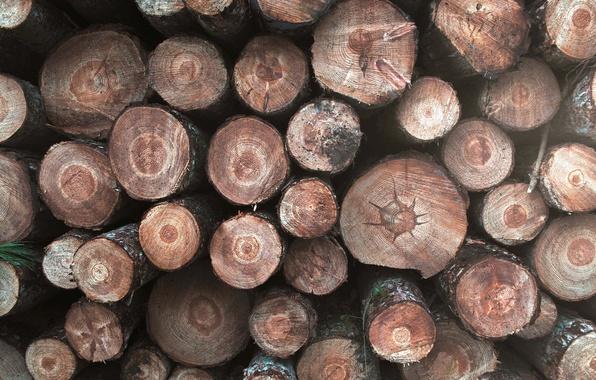 Картинка фон, дрова, брёвна
