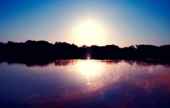 Картинка солнце, туман, озеро, гладь, рассвет, берег, силуэт