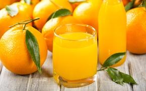 Картинка цитрусы, апельсиновый сок, апельсины
