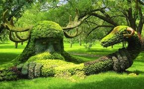 Картинка деревья, парк, змея, Канада, рога, Монреаль, Canada, композиция, Montreal, Montreal Botanical Garden, вигинг, Монреальский ботанический …