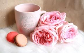 Картинка цветы, розовый, розы, макарони, пироженные