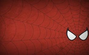 Обои человек-паук, spider-man, рисунок, минимализм, паутина, minimalism, 1920x1080, picture, web