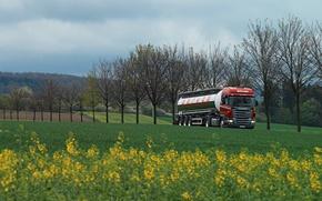 Картинка трава, деревья, трасса, зеленая, truck, тягач, цистерна, backer, Scania R 380. поле