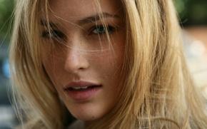 Картинка взгляд, волосы, блондинка, веснушки