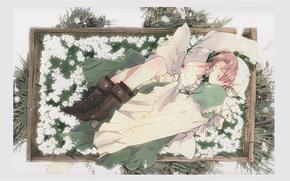 Картинка трава, девушка, цветы, сон, ящик, платок, France, колени, Axis Powers, Hetalia