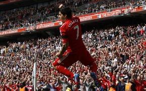 Обои футбол, победа, гол, england, ливерпуль, football, soccer, liverpool, суарез, fans, suarez 2012