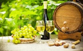 Обои зелень, стол, вино, бутылка, сад, бокалы, виноград, пробки, бочка, штопор