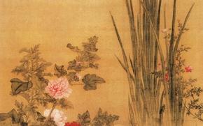 Картинка цветы, Китай, Yu Bai