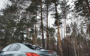 Картинка Природа, Лес, Insignia, Opel