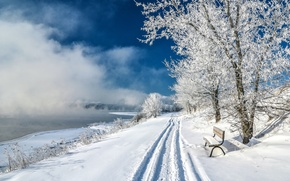 Обои парк, снег, склон, зима, скамья, деревья, озеро, пруд