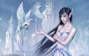 Картинка девушка, птицы, замок, обои, China, эльф, фэнтези, Китай, girl, fantasy, Tang Yuehui, birds, castle, CG …