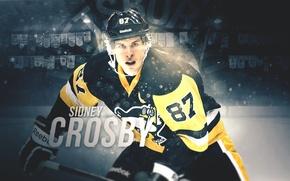 Картинка Penguins, NHL, Pittsburgh, Hockey, Sidney, Crosby