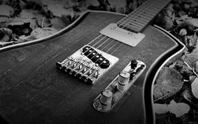 Обои инструмент, стиль, музыкальный, чёрно-белое, гитара, струны, корпус