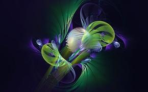 Картинка свет, цвет, лепестки, полумрак, объем