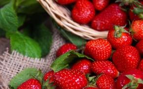 Картинка ягоды, корзина, клубника, strawberry, fresh berries