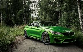 Обои new, bestbmw, m4new, f82, bmwm4, bmw, бмв, auto, green, зеленая