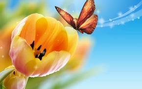 Картинка бабочка, желтые, тюльпаны, голубой фон