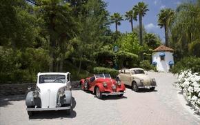 Обои экзотика, классика, автомобили, Mercedes-benz, classic