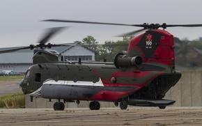 Картинка вертолёт, военно-транспортный, Chinook, CH-47, «Чинук»