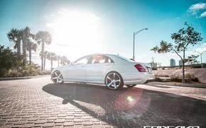 Картинка машина, авто, пальма, Mercedes Benz, auto, S550, Wheels, Concavo