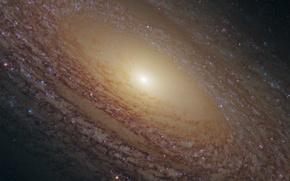 Картинка созвездие, спиральная галактика, NGC 2841, Большая Медведица.