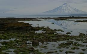 Картинка море, природа, отражение, камни, фото, гора, мох, Камчатка