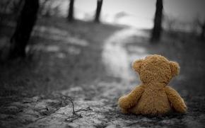 Картинка холод, грусть, осень, одиночество, печаль, Игрушка, ностальгия