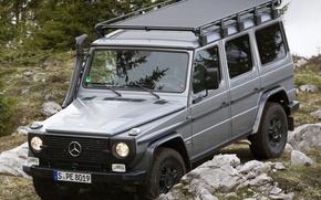 Картинка Mercedes-Benz, Трава, Германия, Мерседес, Камни, Обои, Джип, Внедорожник, CDI, Джи300, G300, Professional, Бенц