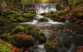 Картинка осень, листья, река, камни, водопад, мох, Швейцария, каскад, Switzerland, Val-de-Travers, Нёвшатель, Canton of Neuchatel, Валь-де-Травер, ...