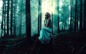 Картинка девушка, платье, освещение, в лесу, the whispering woods