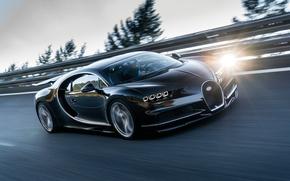 Обои Chiron, скорость, 2016, движение, водитель, Bugatti, трасса
