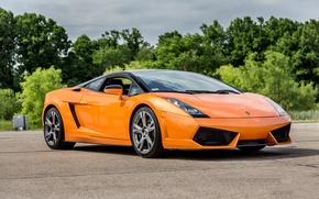 Картинка Lamborghini, Gallardo, orange