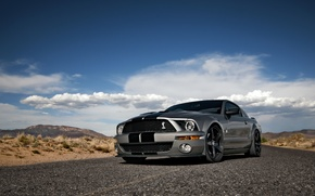 Картинка небо, облака, Mustang, Ford, Shelby, GT500, мустанг, серебристый, мускул кар, форд, шелби, muscle car, silvery