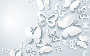 Обои бумажные, бабочки, фон