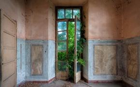 Картинка зелень, комната, дверь