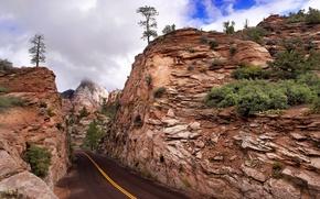 Картинка дорога, горы, Zion National Park