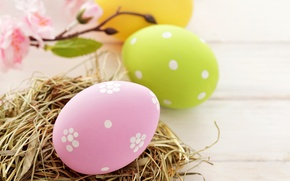 Обои праздник, яйца, весна, желтые, зеленые, Пасха, гнездо, розовые, Easter, пасхальные
